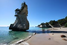 Cathedral Cove beach in New Zealand