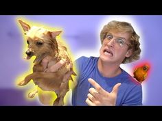 WHAT HAPPENED TO MY DOG?! **exposed**
