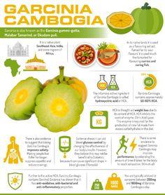 framboise cétone et garcinia cambogia avis de régime