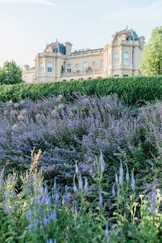 A Luxury Hotel in the English Countryside - Beaverbrook Hotel and Estate in England Countryside Wedding, English Countryside, Simple Wedding Arch, Devon Coast, Holidays In England, Boho Wedding Decorations, Amazing Destinations, Surrey, Destination Wedding Photographer