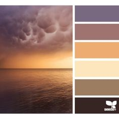 Blurb ebook: Design Seeds by Seed Design Consultancy LLC ❤ liked on Polyvore featuring design seeds, color palettes, colors, palettes and pictures