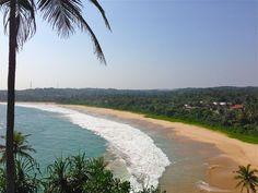 Découvrez tous mes conseils et mes idées de visites sur la côte sud du Sri Lanka. Plein d'infos et mes avis pour préparer votre voyage !