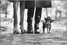 "New York, © Elliott Erwitt/Magnum Photos. Elliott Erwitt: Personal Best retrospective up at ICP til Aug "" ""Like Henri Cartier-Bresson, Mr. Erwitt has been a seeker of the 'decisive. Magnum Photos, Elliott Erwitt Photography, Street Photography, Art Photography, Leica Photography, Photography Office, Photography Gallery, Photography Workshops, Photography Website"