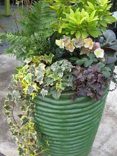12 Tips for Trough Planters - Page 6