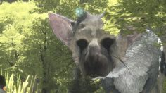 The Last Guardian: Trico's AI Is Incredible... When It Works - IGN Plays Live The Last Guardian's winged bird dog is one of the most impressive feats of AI in video games but it leads to incredibly frustrating moments of gameplay. December 06 2016 at 04:00AM  https://www.youtube.com/user/ScottDogGaming