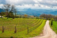 Estrada de terra - Itália