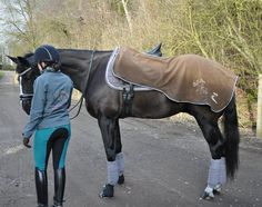Dressage, Equestrian, Bespoke, Amazing, Style, Taylormade, Swag, Horseback Riding, Show Jumping