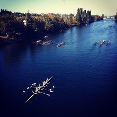 crew #seattle #rowing #instagram