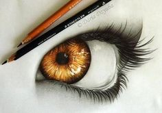 Brown eye colored pencil drawing
