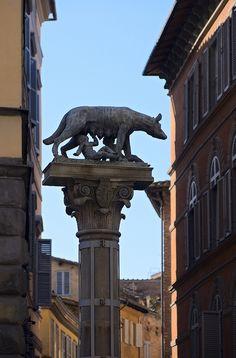 Crossing the Street with Remus, Via Bianchi di Sopra, Siena, Italy by Dmitry Shakin, via Flickr