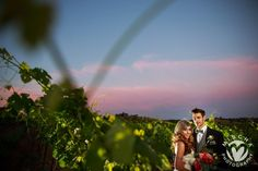A magical vineyard wedding is just a click a away! schedule your tour today! California Wedding Venues, Vineyard Wedding, Rustic Chic, Northern California, Event Venues, Wine Tasting, Special Events, Schedule, Rustic Wedding