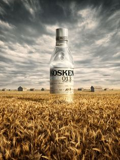 CGI collaborations for advertising industry. Advertising Industry, Advertising Poster, Vodka Humor, Vodka Bottle, Water Bottle, Absolut Vodka, Vodka Drinks, Vodka Sauce, Camping Set