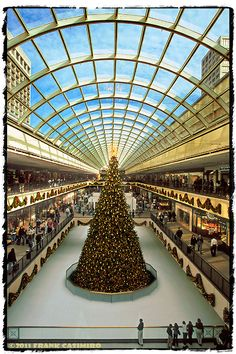 Galleria Christmas Tree, Houston, Texas
