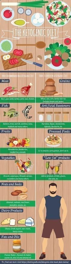 Bodybuilding diet plan low carb picture 9
