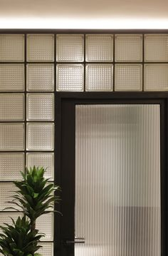 Reeded glass block wall & reeded glass door wall Sleek in the City — Design Anthology The Doors, Windows And Doors, Interior Walls, Home Interior, Glass Blocks Wall, Block Wall, Glass Walls, Glass Doors, Reeded Glass