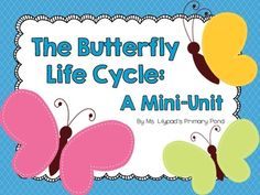 Butterfly Life Cycle Unit For Prek, Kindergarten, Or First Grade