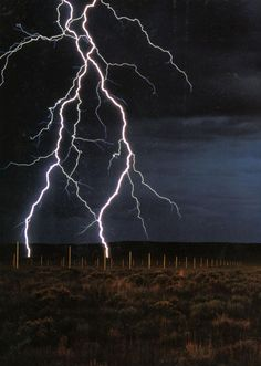 Lightening Field