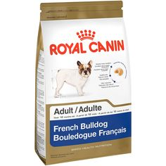 Royal Canin Breed Health Nutrition French Bulldog Adult dry dog food features a combination of nutrients to meet the unique needs of the pure breed French Bulldog French Bulldog Adult, French Bulldogs, Grain Foods, Dry Dog Food, Health And Nutrition, Health Care, Food Design, Dog Food Recipes, Pure Products