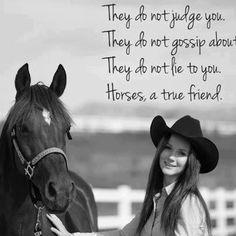 Horses, a true friend.