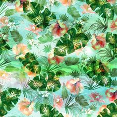 Tropical 1686
