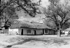 Casă de mahala, Băneasa, 1937.  Foto: Willy Pragher