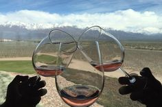 Private Tour: Lujan de Cuyo Wine Region from Mendoza Visit the wine region of Lujan de Cuyo on this day tour from Mendoza. Tour wineries and vineyards while you enjoy wine-tasting and learn about the wine-making process. Choose from three to four wineries on this private tour and customize the itinerary.Start your private tour with pickup from your hotel at 9am. Travel to the Lujan de Cuyo wine region from Mendoza. Customize your itinerary and visit three to four wineries in t...