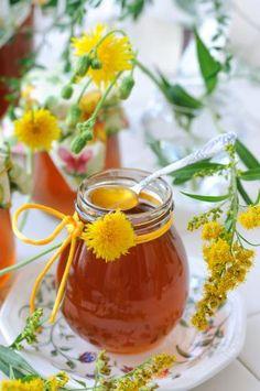 Löwenzahn-Gänseblümchen-Honig und 87.000 weitere Rezepte entdecken auf DasKochrezept.de