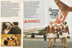 Pacific Airlines, Australian Airlines, Air Lines, Cabin Crew, Air Travel, Flight Attendant, What Is Life About, Australia Travel, Golden Age