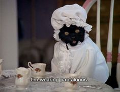 "The best of Salem Saberhagen from ""Sabrina the Teenage Witch"" (1996-2003).  myzk.tumblr.com"