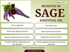 The health benefits of Sage Essential Oil can be attributed to its properties like anti fungal, anti microbial, anti oxidant, anti septic, anti inflammatory, anti spasmodic, anti bacterial, cholagogue and choleretic, cicatrisant, depurative, digestive, disinfectant, emenagogue, expectorant, febrifuge, laxative and stimulant.