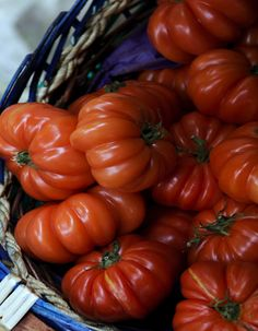 """Nic from 'The Kids are All Right': """"If I hear one more person say how much they love heirloom tomatoes, I'm going to punch them right in the face."""" WELL, I LOVE HEIRLOOM TOMATOES!!!"""