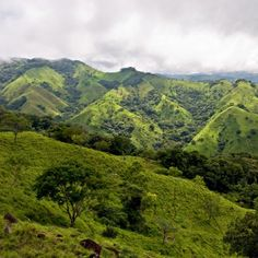 hermosa vista de las montañas de Monteverde - http://www.govisitcostarica.co.cr/travelInfo/photo-gallery.asp?tag=mountains