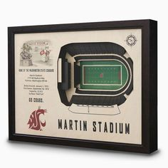 Washington State Cougars StadiumViews 3D Wall Art, Multicolor