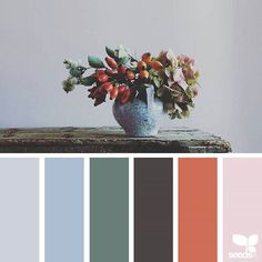 today's inspiration image for { foraged hues } is by @lunaa80 ... thank you, Ania, for another inspiring #SeedsColor image share!
