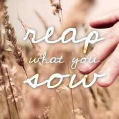 Galatians 6:7 Do not be deceived: God is not mocked, for whatever one sows, that will he also reap.