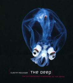 Claire Nouvian, The Deep: The Extraordinary Creatures of the Abyss Weird creatures. The sea. C'mon, wildlife books can be cheesy — but not when they're this weird. Deep Sea Creatures, Weird Creatures, Underwater Creatures, Underwater Life, Beautiful Creatures, Animals Beautiful, Sea And Ocean, Sea World, Marine Life