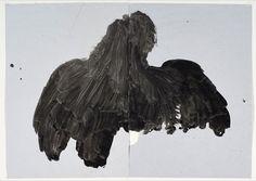 Ombra (ocell) O. Vilapuig