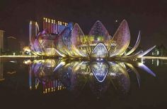 The Lotus building - China