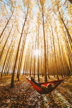 Surrounded by God's beauty. by Nick Verbelchuk on 500px