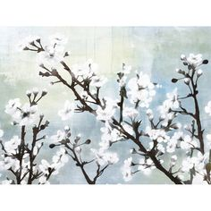 $70: Gallery wrapped giclee print on canvas with a white cherry blossom design.   Product: Wall artConstruction Material: