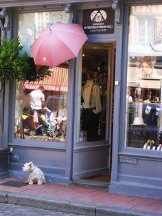 Le chien du Cherbourg, its not just about les parapluies you know.