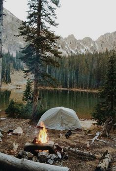 World Camping. Tips, Tricks, And Techniques For The Best Camping Experience. Camping is a great way to bond with family and friends. Bushcraft Camping, Camping And Hiking, Camping Life, Tent Camping, Camping Hacks, Outdoor Camping, Camping Gear, Camping Outdoors, Family Camping