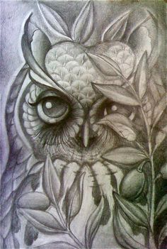 Graphite owl, sketched by, Tisha Dear