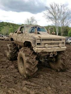 Chevy Mud Truck - perfect fun for me.