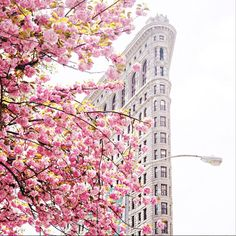 Spring is coming !   The Flatiron Building ‪#‎newyork‬ ©newyorkcity (instagram)
