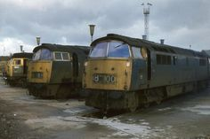br class 52 liveries - Google Search