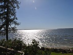 Lake Sam Rayburn - vacation fishing and camping was awesome! Weekend Getaways, Nice View, Ideal Home, The Great Outdoors, Places Ive Been, Big Sam, Camping, Vacation, Explore