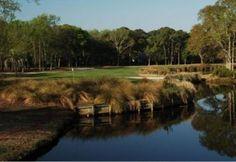 south carolina golf courses | ... Golf and Racquet Club - Barony | Public Golf Course in South Carolina