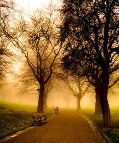 Shrouded in Fog. Weston Park. Sheffield, England. #socialsheffield