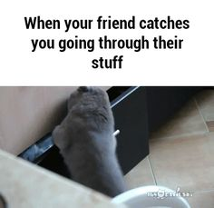 When your friend catches you going through their stuff